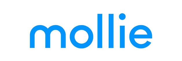 Mollie betaal API - Hoogma Webdesign Beerta