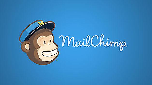 Website koppelen aan MailChimp - Hoogma Webdesign Beerta